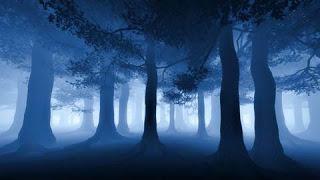 forestabluluce