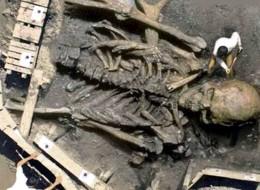 scheletro-gigante-03